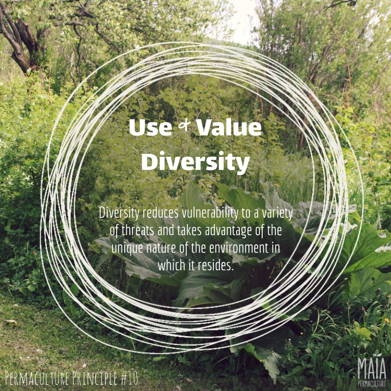 use and value diversity