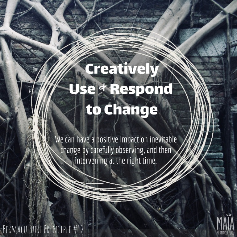 Creatively use and respond to change