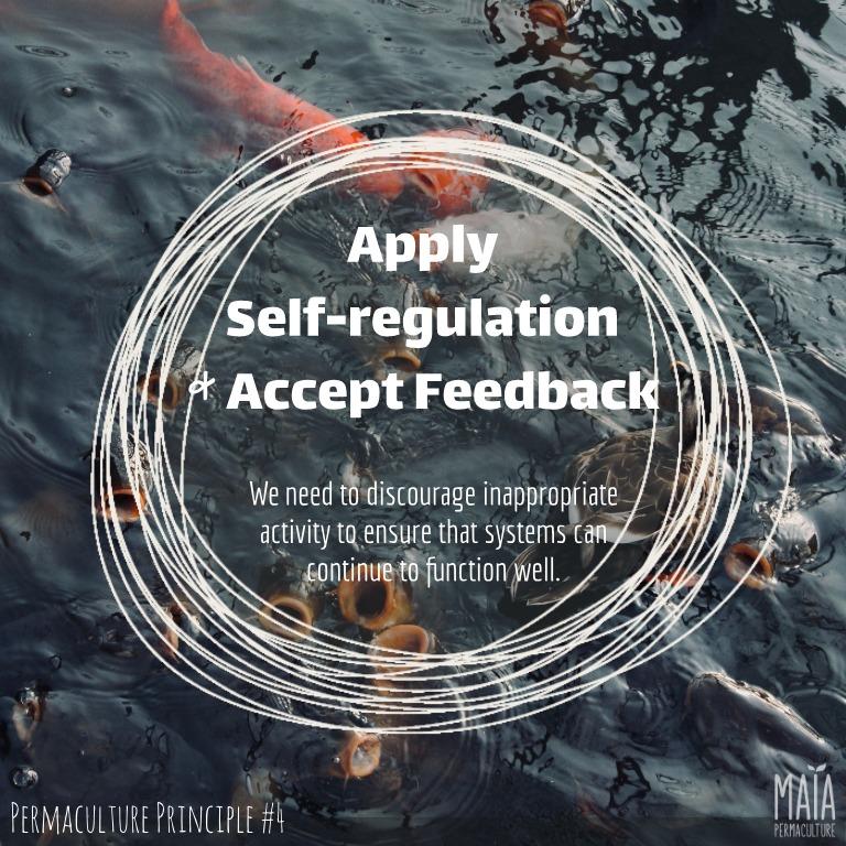 apply self-regulationn and accept feedback