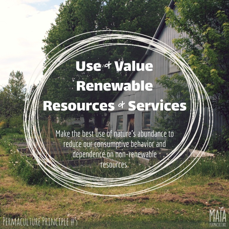 use and value renewable resources and services