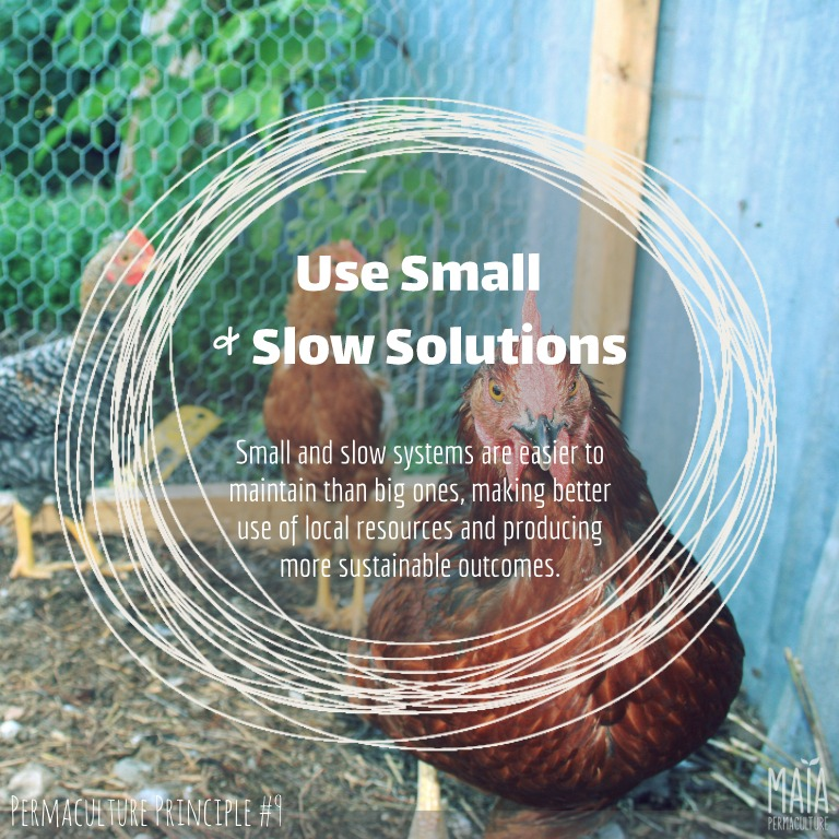 use small and slow solutions