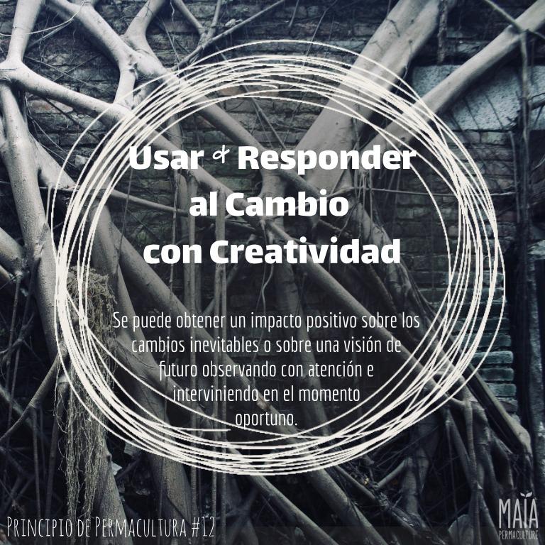 Usa y responde creativamente el cambio