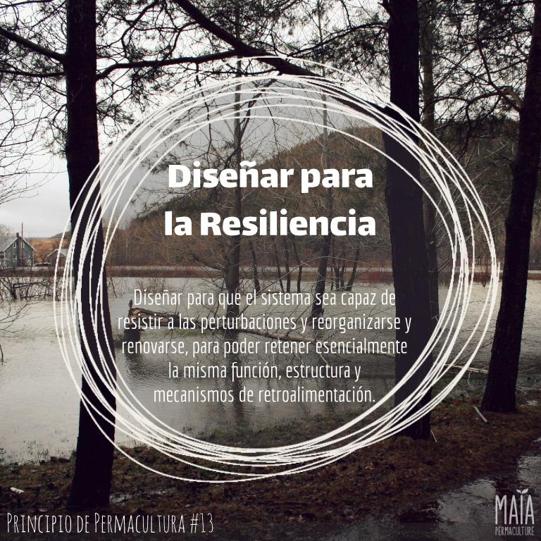 Diseña para la resiliencia