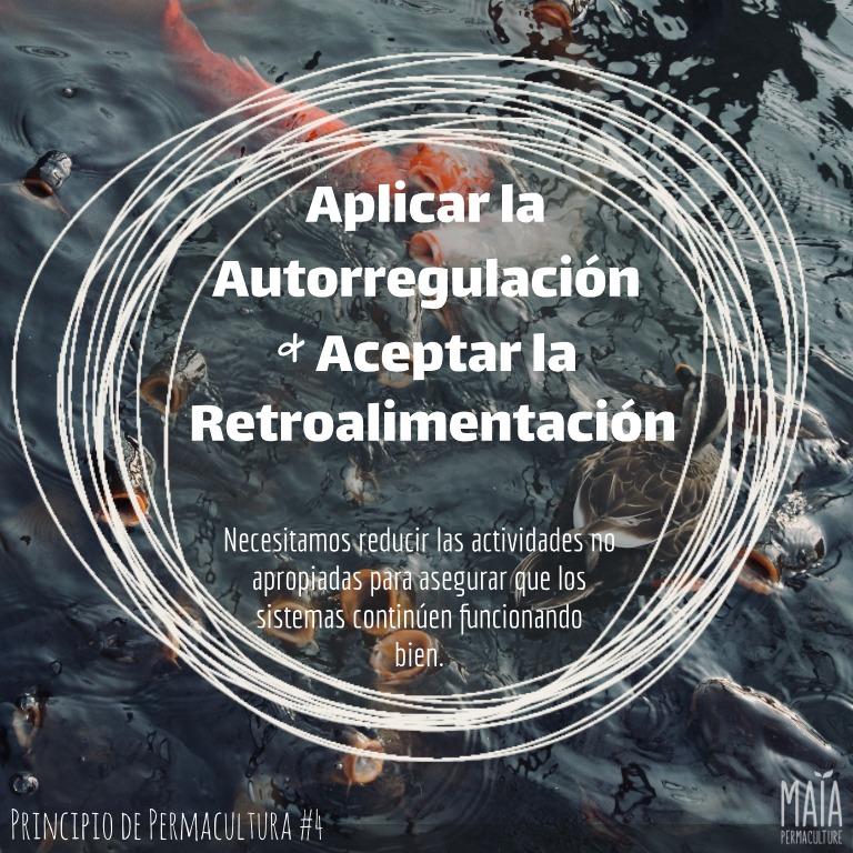 Aplicar auto-regulación y aceptar retro-alimentación
