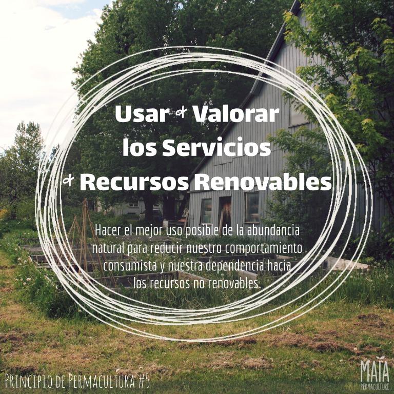 Usar & valorar los servicios & recursos renovables