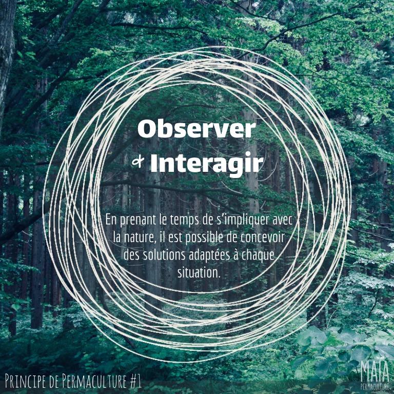 Observer et interagir
