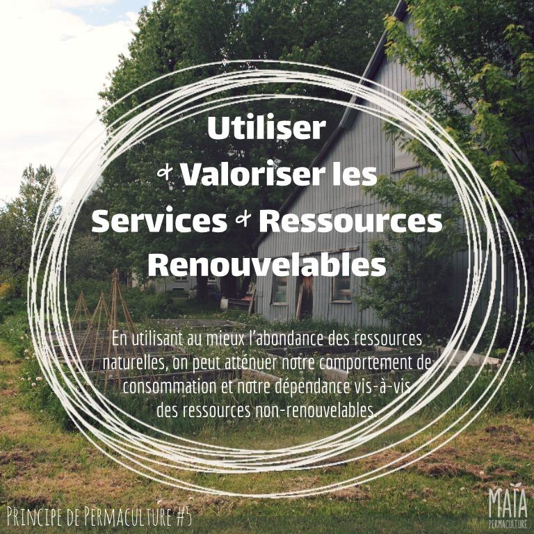 Utiliser et valoriser les services et les ressources renouvelables